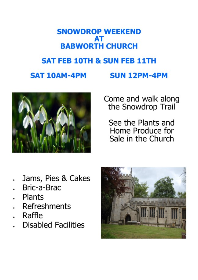 Babworth Snowdrop Weekend 2018